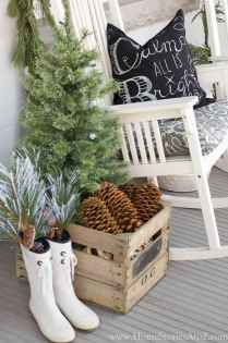 45 Best Christmas Decorations Outdoor Pine Cones Ideas (33)