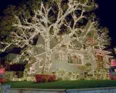 70 Awesome Farmhouse Style Exterior Christmas Lights Decorations (53)