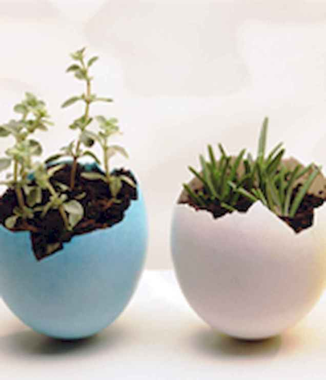 30 Brilliant DIY Egg Shell Seed Starters Crafts Ideas (31)