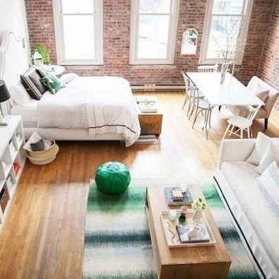 77 Magnificent Small Studio Apartment Decor Ideas (12)