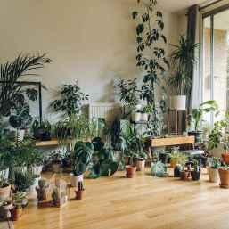 80 Brilliant Apartment Garden Indoor Decor Ideas (15)
