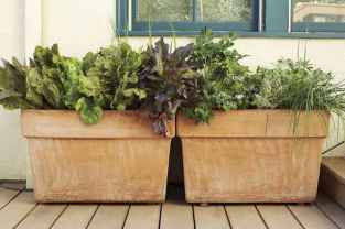 60 Gorgeous Container Gardening Ideas Decorations And Makeover (23)
