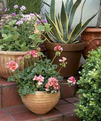 60 Gorgeous Container Gardening Ideas Decorations And Makeover (33)