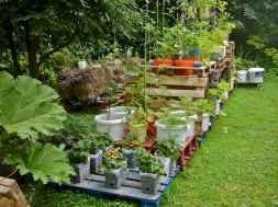 60 Gorgeous Container Gardening Ideas Decorations And Makeover (38)