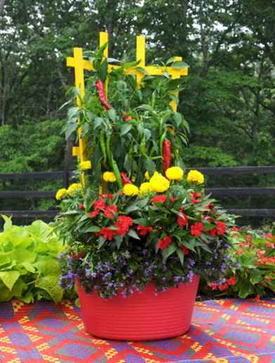 60 Gorgeous Container Gardening Ideas Decorations And Makeover (45)