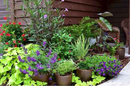 60 Gorgeous Container Gardening Ideas Decorations And Makeover (46)