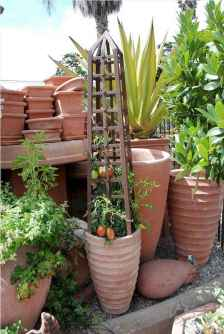 60 Gorgeous Container Gardening Ideas Decorations And Makeover (53)