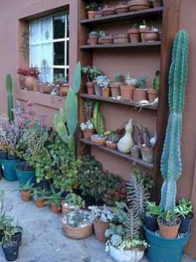 100 Beautiful DIY Pots And Container Gardening Ideas (48)