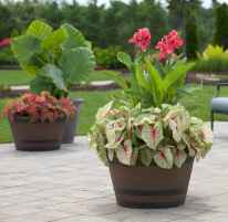 100 Beautiful DIY Pots And Container Gardening Ideas (74)