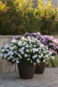 100 Beautiful DIY Pots And Container Gardening Ideas (79)