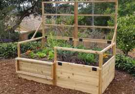 25 Easy DIY Vegetable Garden Small Spaces Design Ideas For Beginner (20)