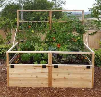 25 Easy DIY Vegetable Garden Small Spaces Design Ideas For Beginner (6)