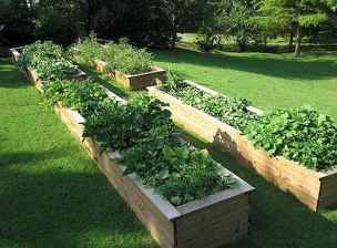 50 Best Garden Beds Design Ideas For Summer (12)