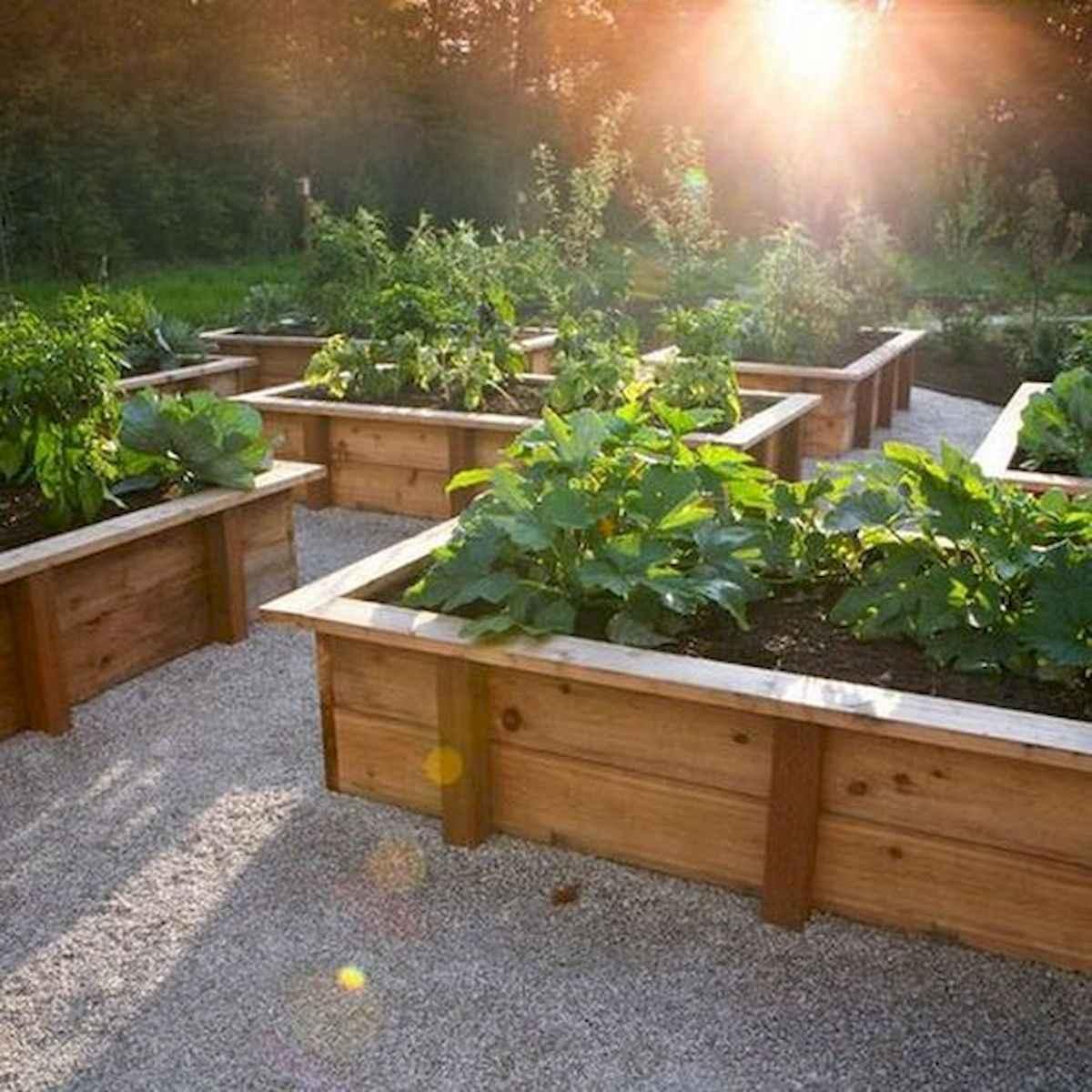 55 Favorite Garden Boxes Raised Design Ideas (51)