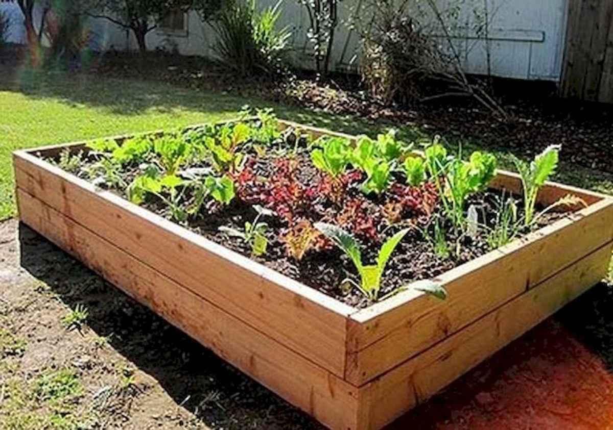55 Favorite Garden Boxes Raised Design Ideas (8)