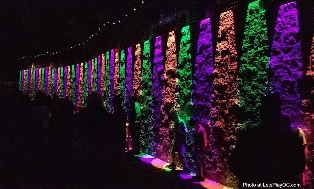 Zoo Lights Admission Cost
