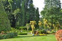 Royal Botanical Garden of Peradeniya Sri Lanka