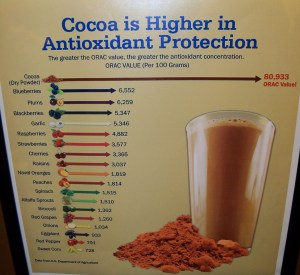 Cocoa and Antioxidants