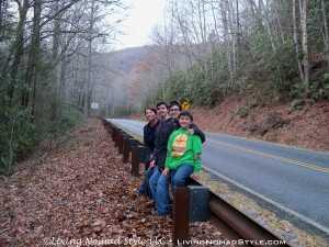 Roadside - Blue Ridge Parkway 2