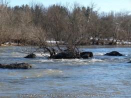 Shenandoah River 2