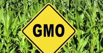 Caution for GMOs, Consumer Reports