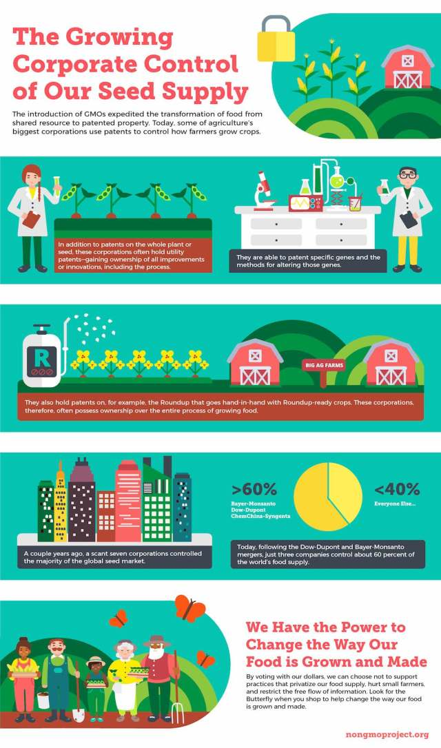 Corporate Control of our Seed Supply Infographic