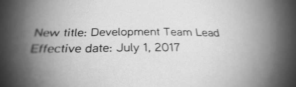 July 2017 income report team lead position