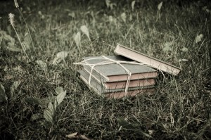 Books in Grass