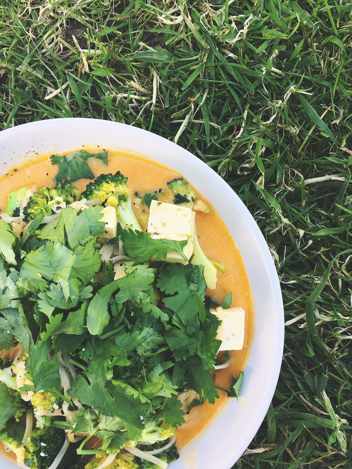 spicy noodle soup with fresh coriander and tofu