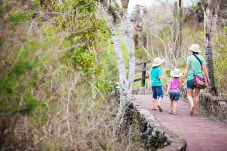 Cheap summer family fun: hiking with kids
