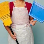 Use 3 cheap cleaning products for everything