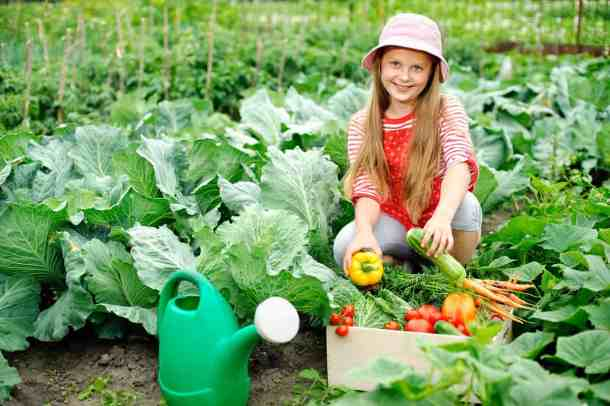 Young girl in the vegetable garden