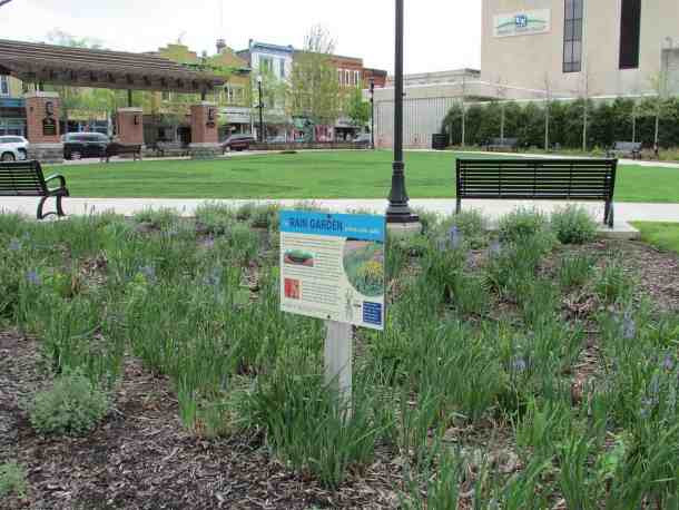 Rain Garden next to Central Park Plaza and Indiana Ave at Lafayette St in Valparaiso, Indiana photo by Chris Light (CC5)
