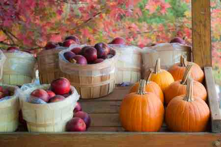 How to keep fall fruits and vegetables fresh longer