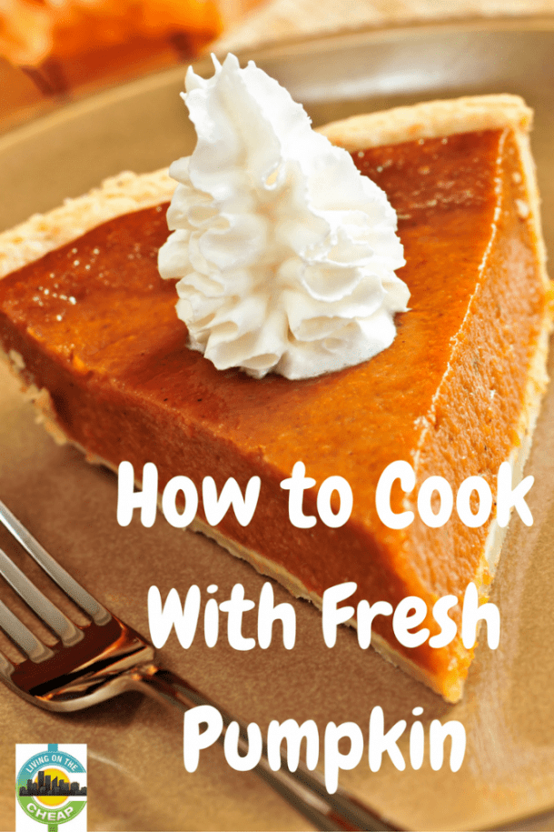 I can't believe how easy it is to use fresh pumpkin. And it's cheap!