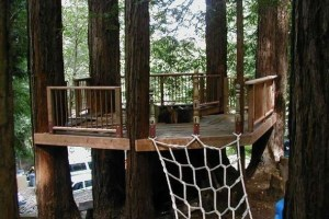 Building a Tree Fort or Tree house is The Ultimate Backyard Experience for Kids