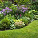 Should You Be Using A General Garden Fertiliser
