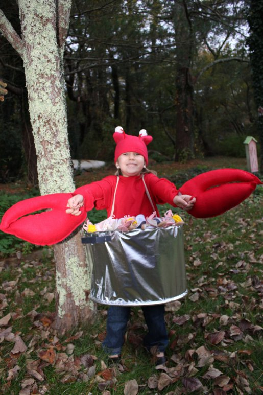lobster catch costume
