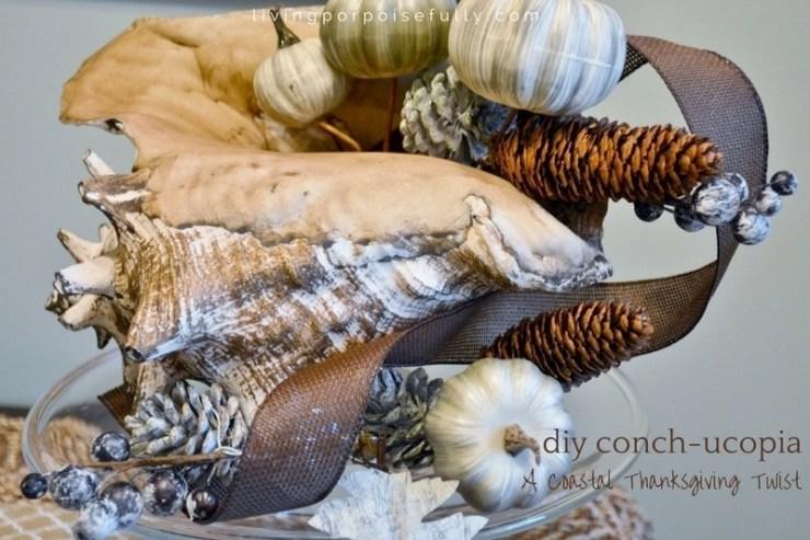 diy-conch-ucopia-2