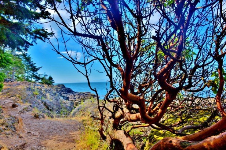 Lime Kiln trail
