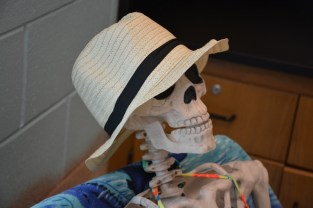skeleton-beach-hat-800x533
