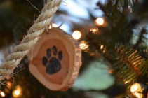 ornaments-pawprint-2-800x533
