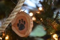 ornaments-pawprint-2-800x533