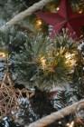 ornaments-stars-2-533x800