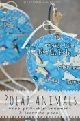 polar-animals-free-printable-ornament-and-learning-page
