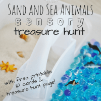 Sand and Sea Animals Sensory Treasure Hunt