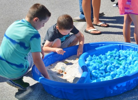 Sand and Sea Animals Treasure Hunt Ocean Themed Activity 4