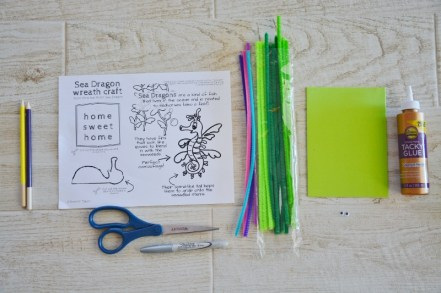 seahorse sea dragon craft - pipe cleaners and foam supplies