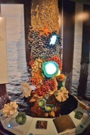 Monterey Bay - interactive exhibits