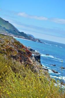 big sur view (4)